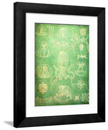 Sealife IV-John Butler-Framed Giclee Print