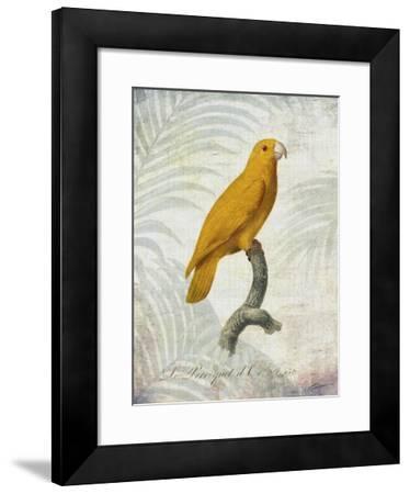 Parrot Jungle V-John Butler-Framed Giclee Print