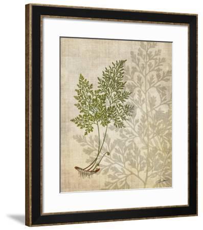 British Ferns IV-John Butler-Framed Giclee Print