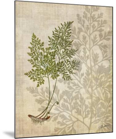 British Ferns IV-John Butler-Mounted Giclee Print
