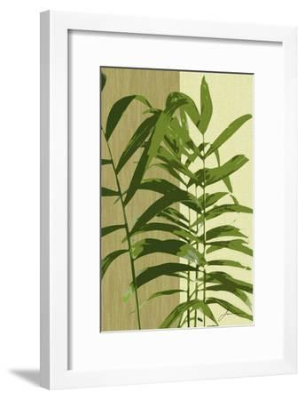 Painted Contrast Leaves II-James Burghardt-Framed Art Print