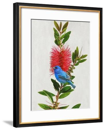 Avian Tropics III-Chris Vest-Framed Giclee Print