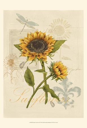 Romantic Sunflower II-Jade Reynolds-Framed Art Print