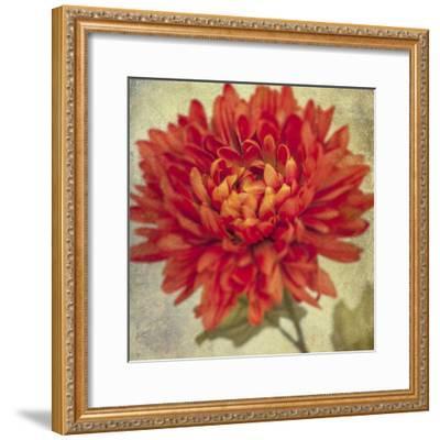 Lush Vintage Florals III-Honey Malek-Framed Art Print