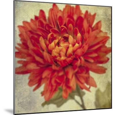 Lush Vintage Florals III-Honey Malek-Mounted Art Print