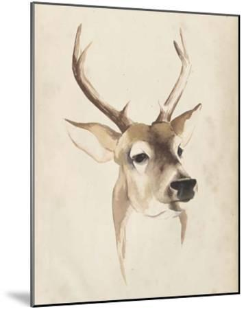 Watercolor Animal Study IV-Grace Popp-Mounted Giclee Print