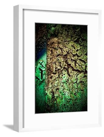 Rust Forest II-Jean-Fran?ois Dupuis-Framed Art Print