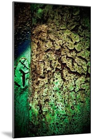 Rust Forest II-Jean-Fran?ois Dupuis-Mounted Art Print