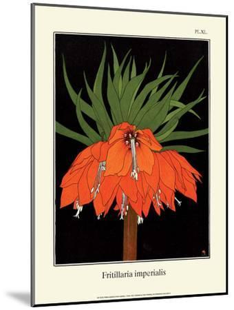 Botanical Print, Crown Imperial, 1905-Luite Klaver-Mounted Art Print