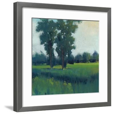 Afternoon Sun I--Framed Art Print