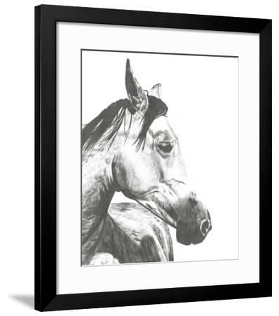Wildlife Snapshot: Horse II-Naomi McCavitt-Framed Giclee Print