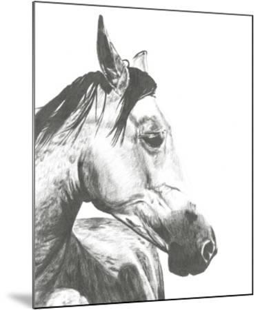 Wildlife Snapshot: Horse II-Naomi McCavitt-Mounted Giclee Print