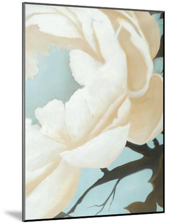 Floral Study-Kc Haxton-Mounted Art Print