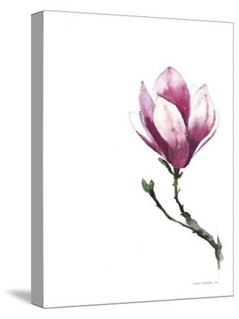 Magnoila 2--Stretched Canvas Print
