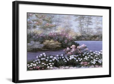 Still Waters-Diane Romanello-Framed Art Print