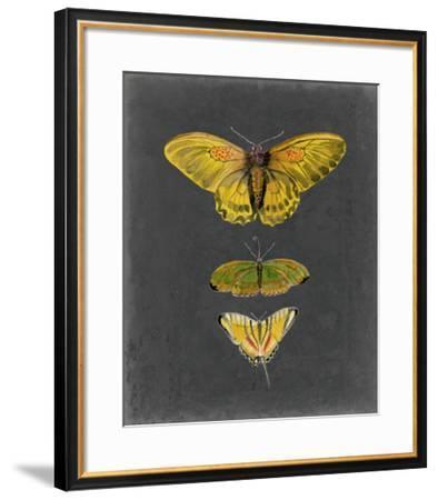 Butterflies on Slate I-Naomi McCavitt-Framed Giclee Print
