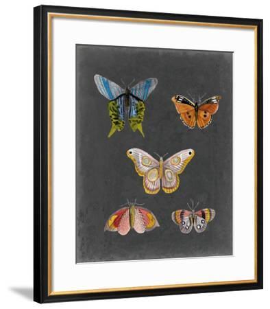 Butterflies on Slate II-Naomi McCavitt-Framed Giclee Print