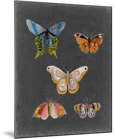 Butterflies on Slate II-Naomi McCavitt-Mounted Giclee Print
