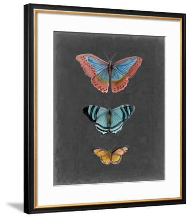 Butterflies on Slate III-Naomi McCavitt-Framed Giclee Print