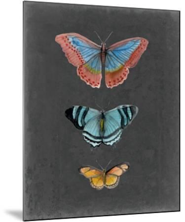 Butterflies on Slate III-Naomi McCavitt-Mounted Giclee Print
