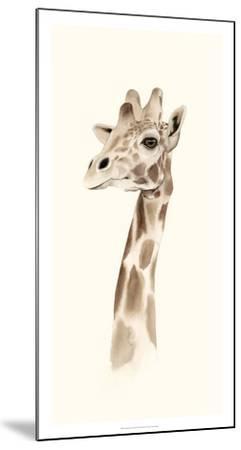 Safari Portrait III-Grace Popp-Mounted Giclee Print