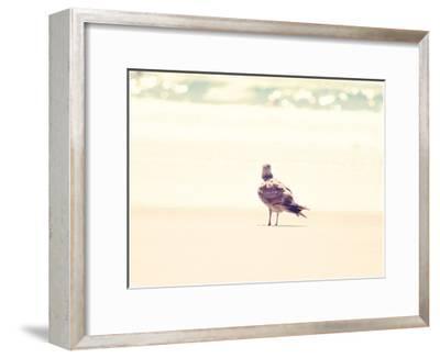 Go Right-Sylvia Coomes-Framed Art Print