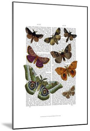 Moth Plate 2-Fab Funky-Mounted Art Print