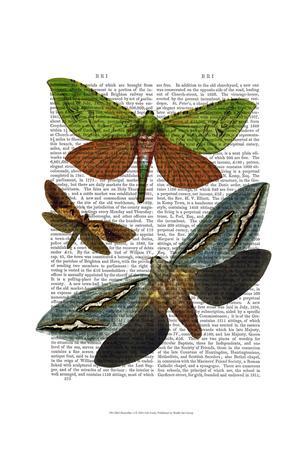 Butterflies 3-Fab Funky-Framed Art Print