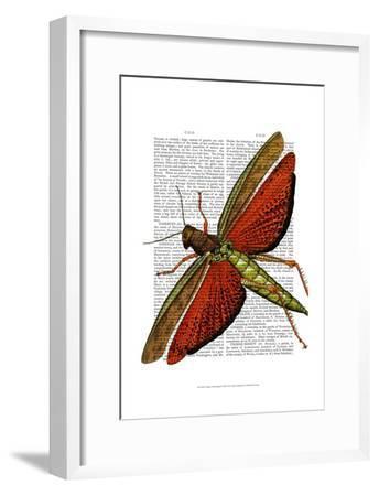 Vintage Grasshopper-Fab Funky-Framed Art Print