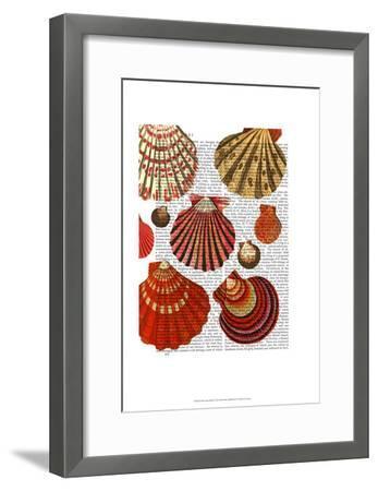 Red Clam Shells-Fab Funky-Framed Art Print