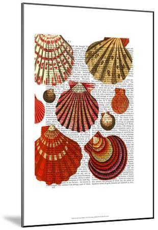 Red Clam Shells-Fab Funky-Mounted Art Print