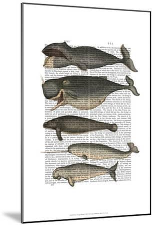 Five Vintage Whales-Fab Funky-Mounted Art Print