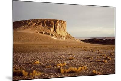 Atacama Desert-Chris Simpson-Mounted Giclee Print