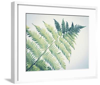 Sori II-Ella Lancaster-Framed Giclee Print