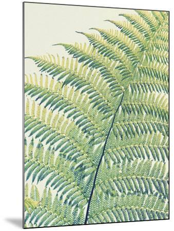 Frond II-Ella Lancaster-Mounted Giclee Print