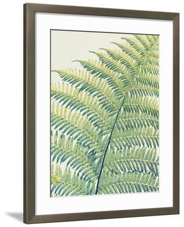 Frond II-Ella Lancaster-Framed Giclee Print