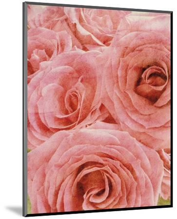 Vintage Romance II-Collezione Botanica-Mounted Art Print