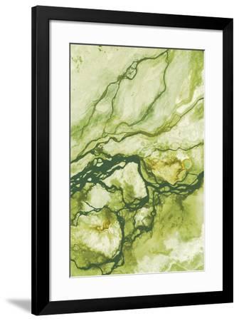 Ecology II-Peter Adams-Framed Giclee Print