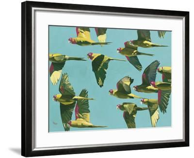 Parrots in Flight - Retro-Pete Hawkins-Framed Giclee Print