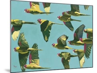 Parrots in Flight - Retro-Pete Hawkins-Mounted Giclee Print
