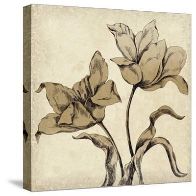 Paper Tulip I-Maria Mendez-Stretched Canvas Print
