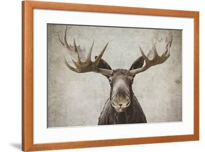 Elmer-Natasia Cook-Framed Art Print