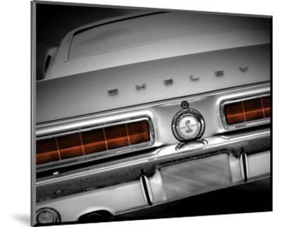 Shelby Mustang--Mounted Art Print