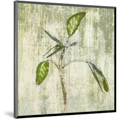 Leafy Green 4--Mounted Art Print