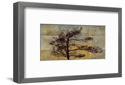 Satori IV--Framed Art Print