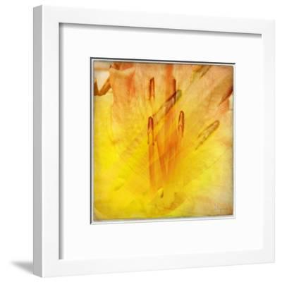 Colorful encounter II-Jean-Fran?ois Dupuis-Framed Art Print