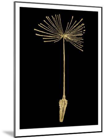 Dandelion 1 Golden Black-Amy Brinkman-Mounted Art Print