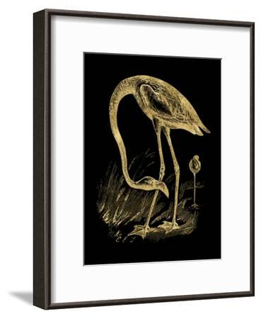 Flamingo 1 Golden Black-Amy Brinkman-Framed Art Print