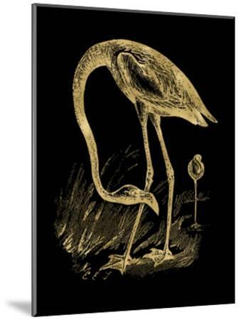 Flamingo 1 Golden Black-Amy Brinkman-Mounted Art Print