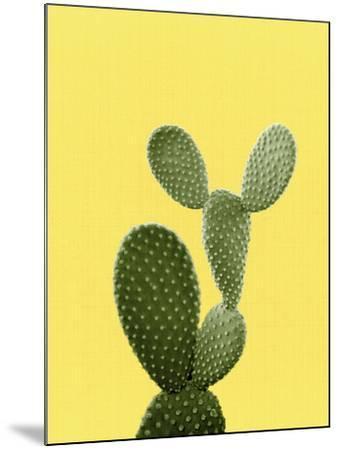 Cactus On Yellow-LILA X LOLA-Mounted Art Print